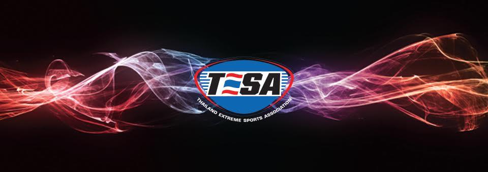 Tesa History